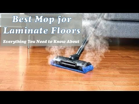 12 Best Mop for Laminate Floors 2019 Reviews - Steam Buying Guide