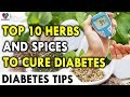 Top 10 Herbs and Spices to Cure Diabetes - Top 10 Home Remedies For Diabetes