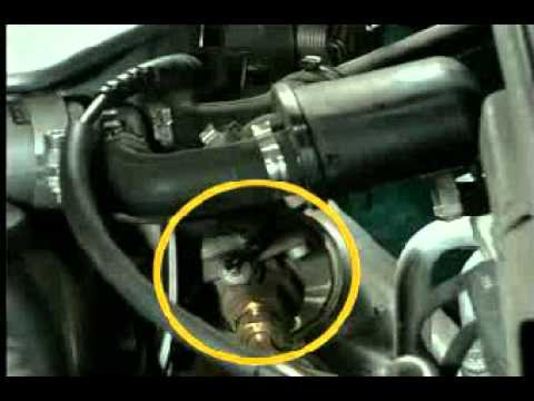 Oil Filter Lookup By Vehicle moreover Wiring Diagram For 2008 Honda Accord additionally 91053 Dohc Zc Specs Mods Parts List as well Where Is Crankshaft Position Sensor further 98 Dodge 3500 5 9 Fuel Filter. on throttle position sensor location honda fit