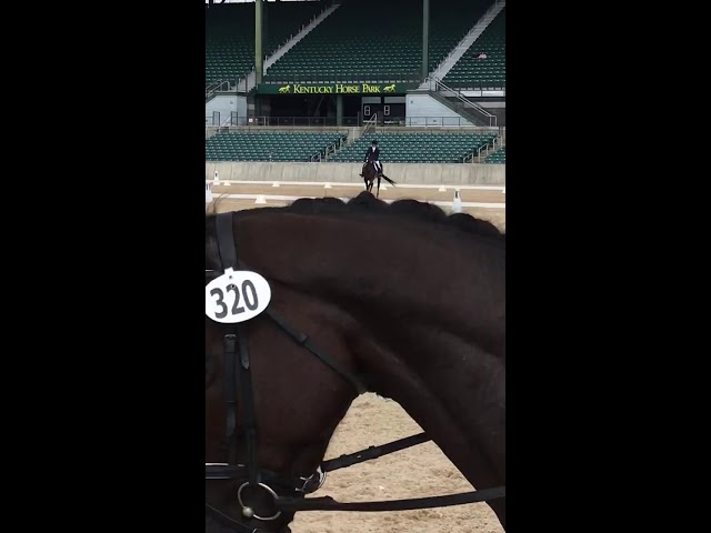 RRP Thoroughbred Makeover 2018 Tac Rap Dressage