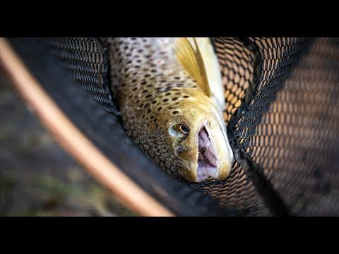 Yellowstone Fly Fishing 4k