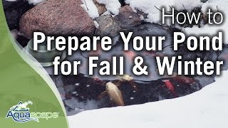Aquascape's How To Preṗare Your Pond for Fall and Winter