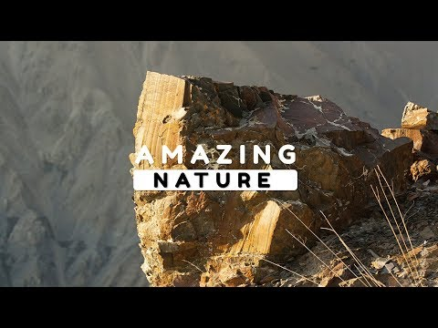 Beautiful Nature Video in Full HD - Summer Season - Peak Ginic - Episode 4 - 8 Minute