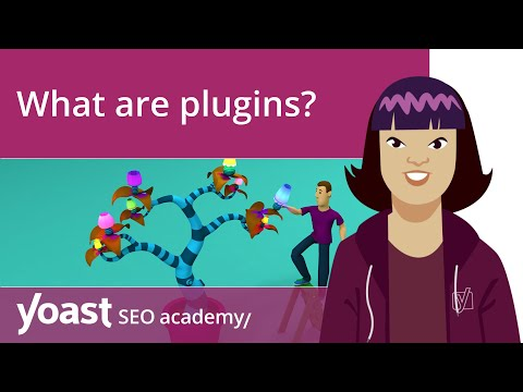 What are plugins and what can they do for your WordPress site? | WordPress for beginners