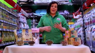 Wet Vs Dry Dog Food - Maxi Zoo Ireland
