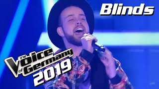 Shawn Mendes - There's Nothing Holdin' Me Back (Dario Denegri) | The Voice of Germany | Blinds