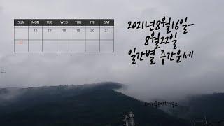 ☯️2021년8월16일-8월22일 일간(日干)별 주간운세