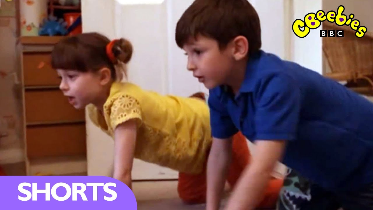 cbeebies topsy and tim remember when lost stick. Black Bedroom Furniture Sets. Home Design Ideas