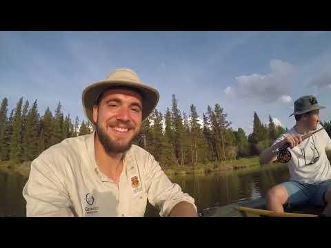 Fishing Mclean Pond