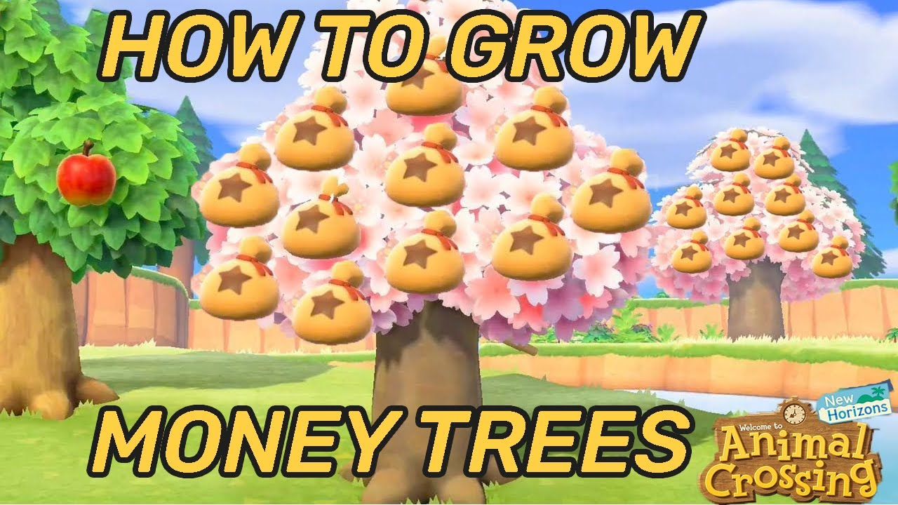 HOW TO plant and grow MONEY TREES - Animal Crossing: New ...