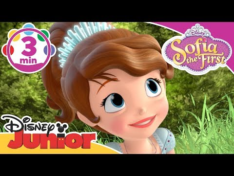 Sofia the First | I Am On Your Side Song | Disney Junior UK