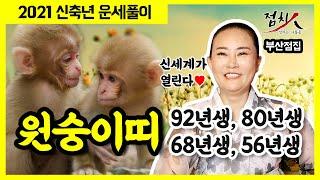 [부산점집] 원숭이띠운세 2021년 신축년 띠별운세 9탄! 92년생, 80년생, 68년생, 56년생 내년운세…