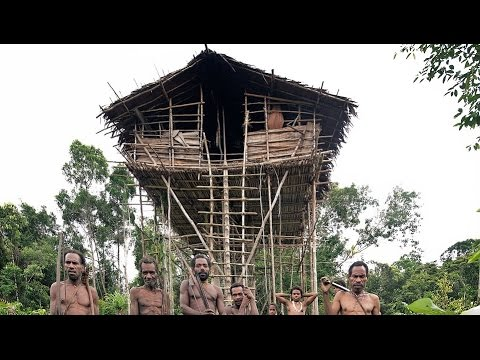 Incredible homes of the treehouse tribe amazing images for Best tribal house