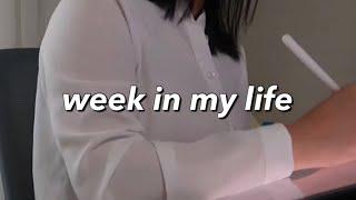 취준생 브이로그 | 집에서 면접 준비하는 취준 일상 (…