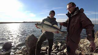 Рыбалка на Самарли Крым водохранилище ОГРОМНЫЙ СУДАК
