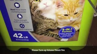 The Best Kitty Litter Ever