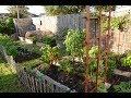 Spanish/Mexican garden heritage  William Welch Central ...