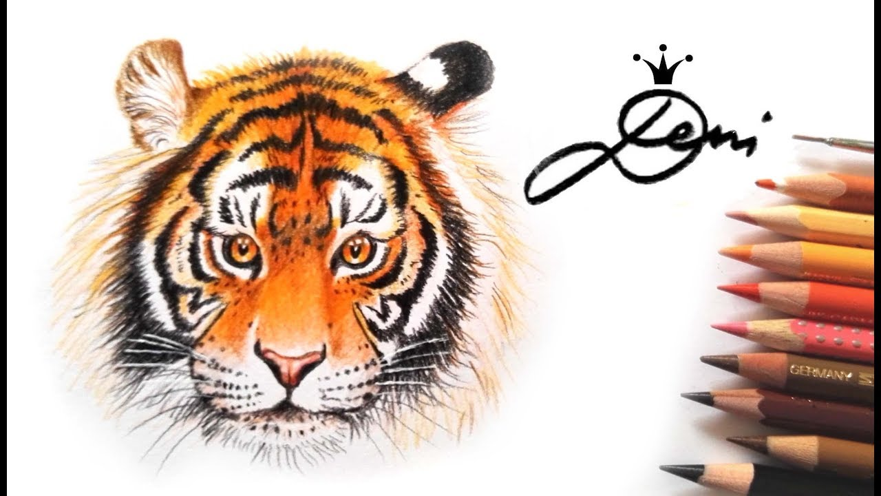Tiger Zeichnen Tigerkopf Malen How To Draw A Tiger Head Kак се рисува тигър
