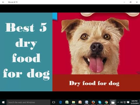 best-dry-food-for-dog/-grain-free-dry-dog-food