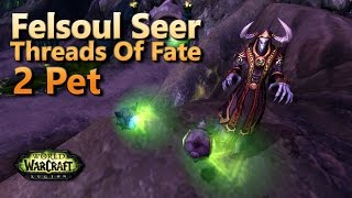 Felsoul Seer Pet Battle World Quest Threads of Fate 2 Pet Leveling Strategy