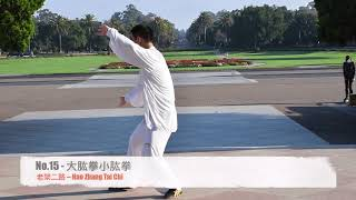 Chen Style - Old Er Road (Hao Zhang Tai Chi)