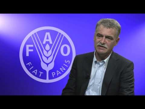 Q&A on FAO livestock report