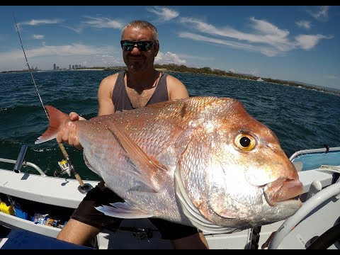 Snapper Fishing Gold Coast Style 1080p