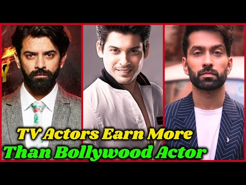 Per Day Income Of Indian TV Actors