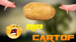 They stole a PIG POTATO! -LIVE WITH MINECRAFT, ROYALE AND CLASH AMONG THE SLEEP ON YOUR NEW PC!