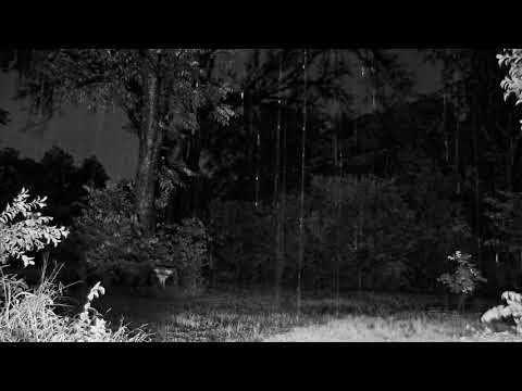 R.V - TABULA RASA ft. KOZINAK