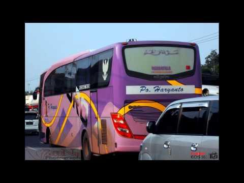 koleksi foto bus po Haryanto by venNha