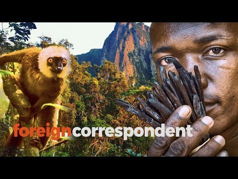 Meet those getting rich off vanilla in Madagascar   Foreign Correspondent