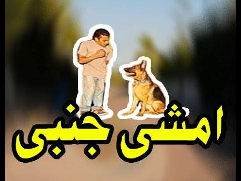 طريقة تدريب الكلب انه يمشي جنبك HEEL DOG TRAINING !!!!!