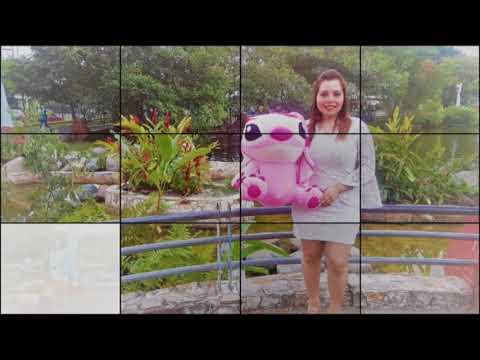 Peluches Gigantes Decoraciones El Sol Guayaquil