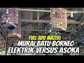 Pertarungan Sengit Elektrik Dan Asoka Di Kelas Murai Batu Borneo  Mp3 - Mp4 Download