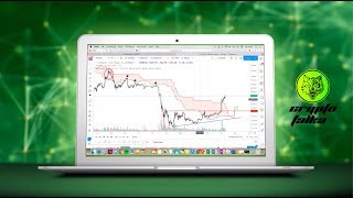 bitcoin grosze bitcoin market watch alkalmazás