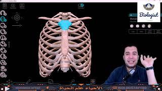 شرح الهيكل المحورى بطريقة رائعة - أحياء 3ث - 2021 -أفهم أحياء