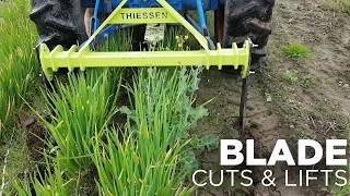 Improve Harvesting Efficiency with the Thiessen Undercutter/Bed Lifter