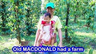 Old MacDonald Had A Farm | Sing Along with Lyrics
