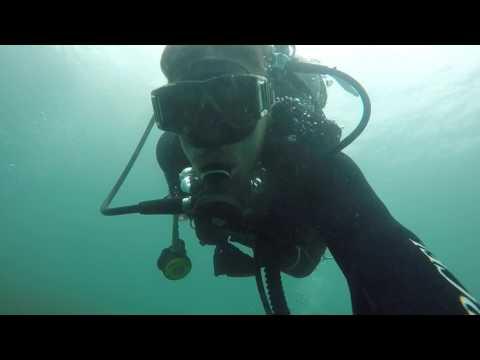 Buceo en la Isla de Arboredo, Florianópolis - Brasil / Scuba diving in Arboredo Island - verano 2017
