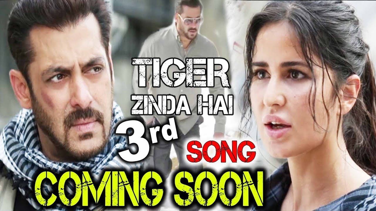 Tiger Zinda Hai Movie Song: Tiger Zinda Hai 3rd Song जल्द ही