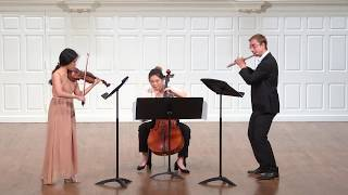 P. I. Tchaikovsky: Swan Lake - Waltz for flute, violin and cello