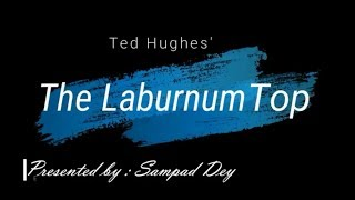 The laburnum top by Ted Hughes line by line analysis in Hindi.