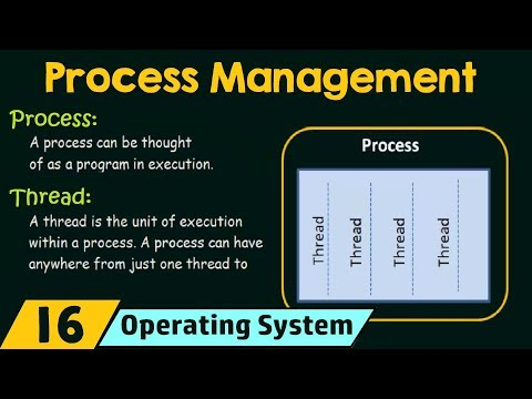 Process Management (Processes and Threads)