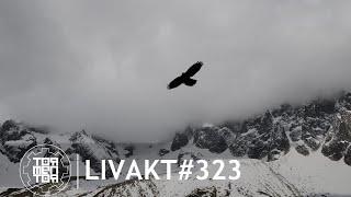 LIVAKT#323