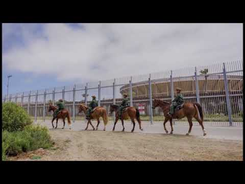 What the Renewed Border Enforcement Means For Black Immigrants