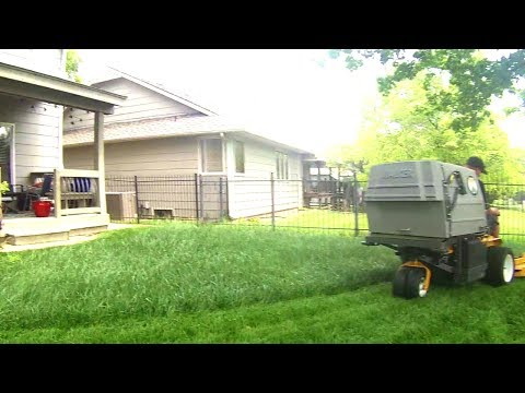 Bagging or Side Discharge Mowing Overgrown Lawn