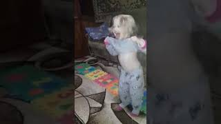 Танци з зиркамы 2019, Ляля танцует, марув, время и стекло, монатик, NK