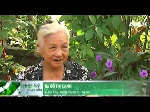VTC14_Chung tay giúp đỡ bệnh nhân tâm thần phân liệt