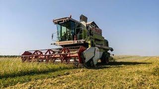 Żniwa 2017 - Claas - Harvester 2017